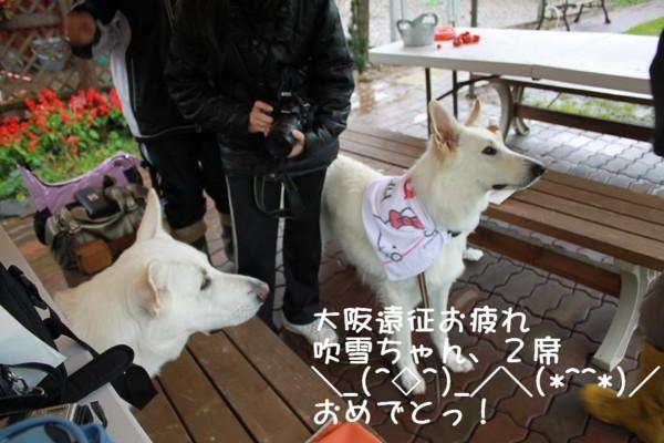 f:id:buhi84shin:20111001102044j:image:left