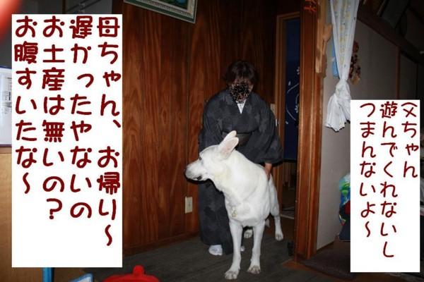 f:id:buhi84shin:20111002160446j:image:left