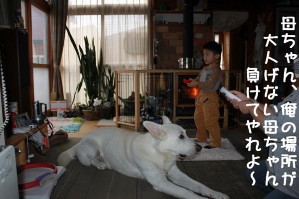 f:id:buhi84shin:20111012152913j:image:left