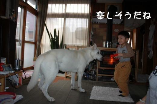 f:id:buhi84shin:20111012152938j:image:right