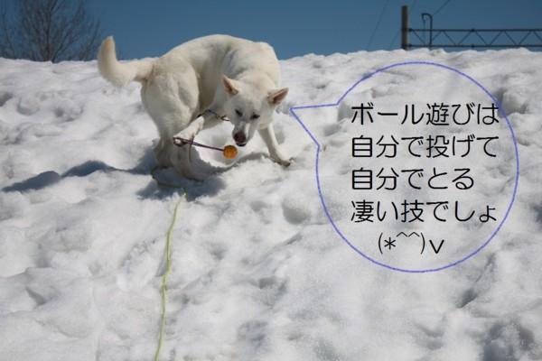f:id:buhi84shin:20120412211648j:image