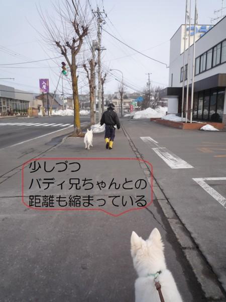 f:id:buhi84shin:20120414204329j:image