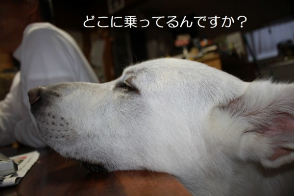 f:id:buhi84shin:20120713220643j:image