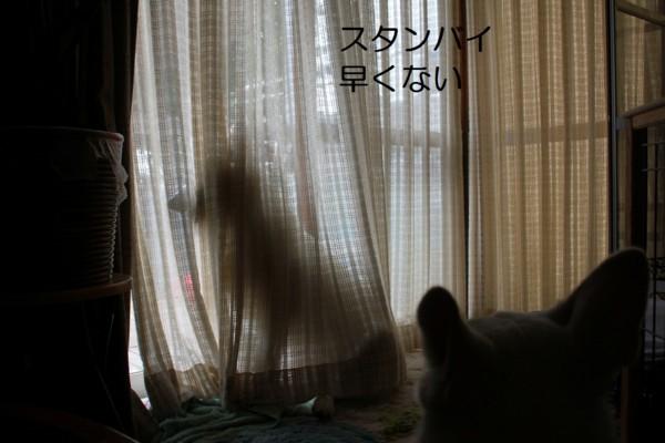 f:id:buhi84shin:20120722204613j:image