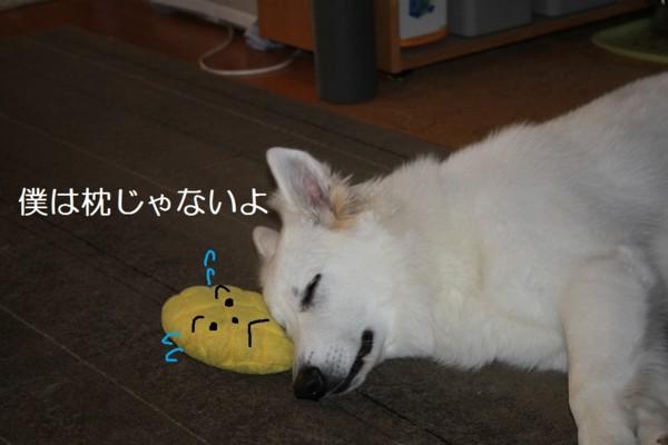 f:id:buhi84shin:20120723213552j:image