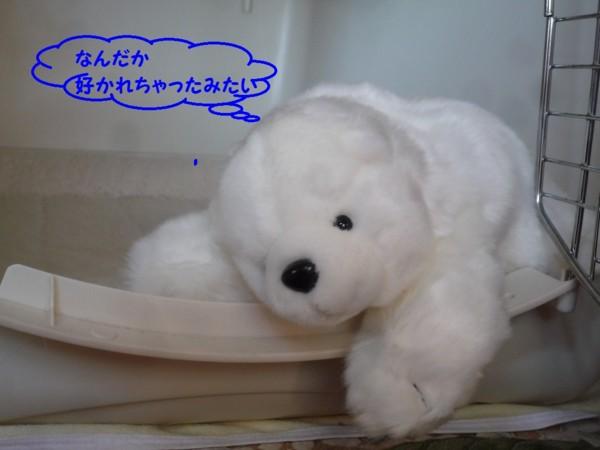 f:id:buhi84shin:20130213122050j:image