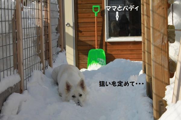 f:id:buhi84shin:20130220212355j:image