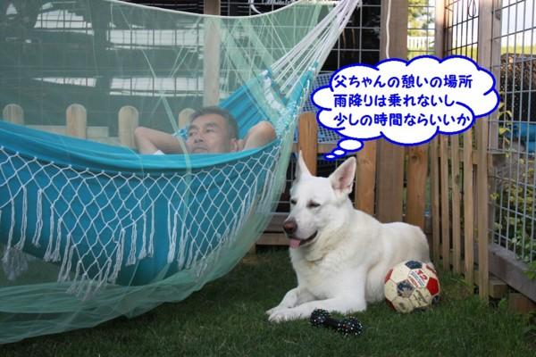 f:id:buhi84shin:20130718225033j:image