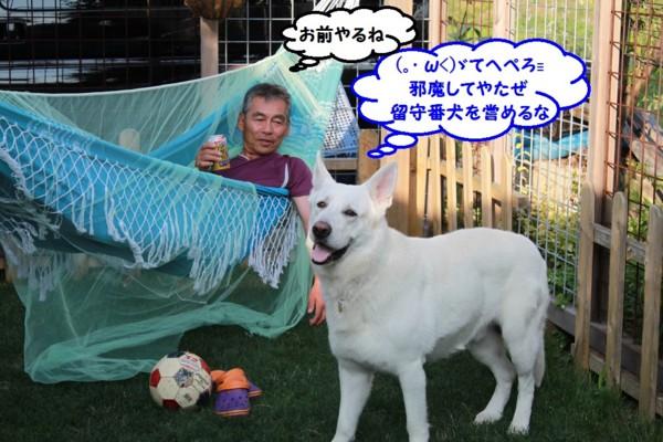 f:id:buhi84shin:20130722212202j:image