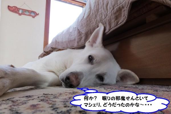 f:id:buhi84shin:20131214205621j:image