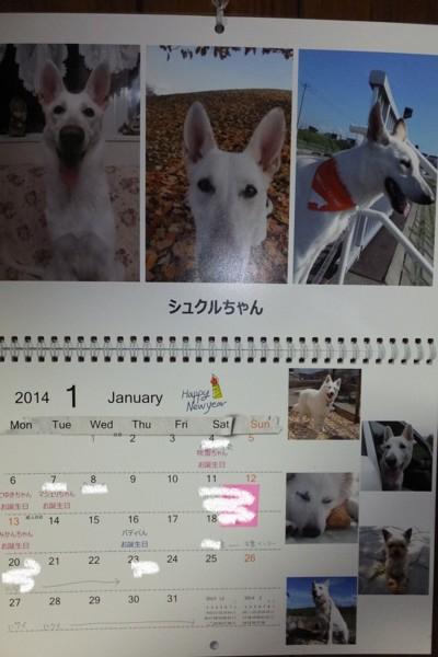 f:id:buhi84shin:20140101185740j:image