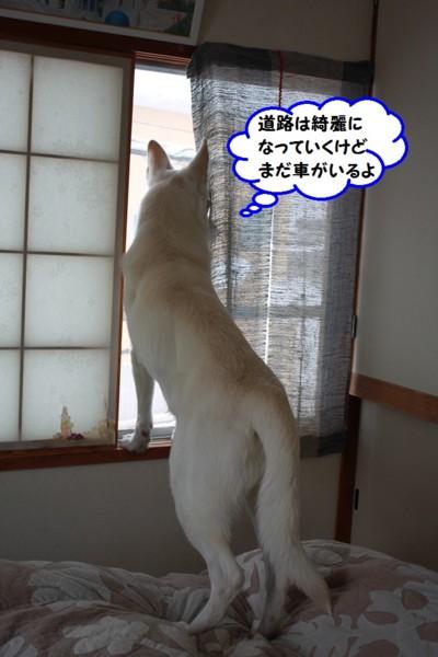 f:id:buhi84shin:20140122205545j:image