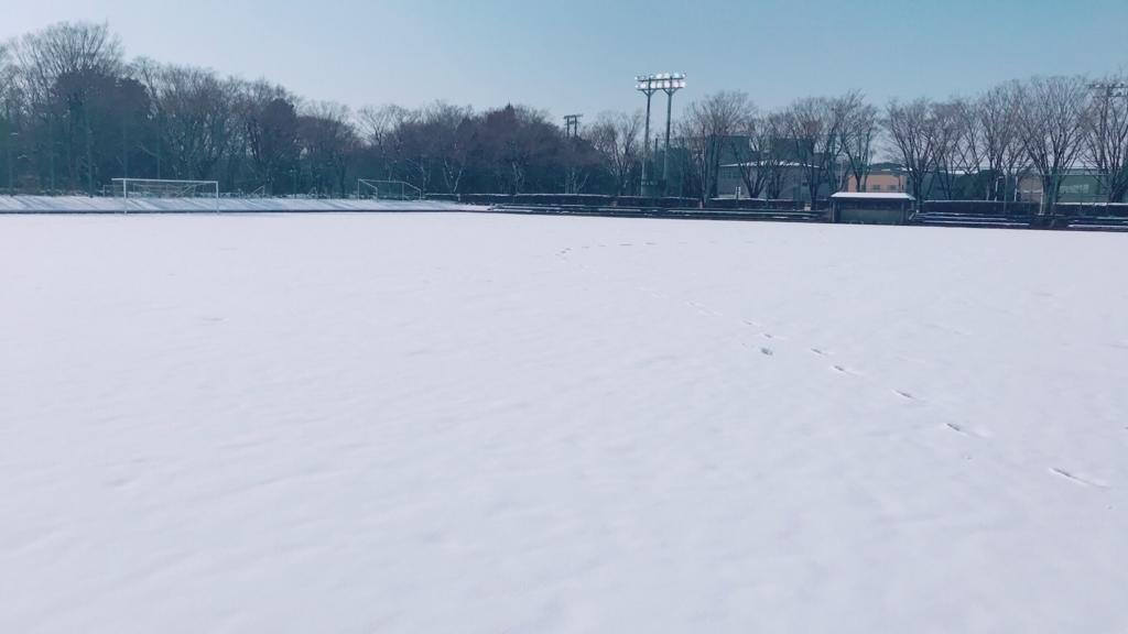 f:id:buinblog-tsukuba:20180125123027j:plain