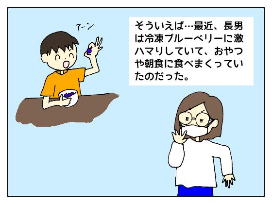 f:id:bukiyokachan:20210604105732p:plain