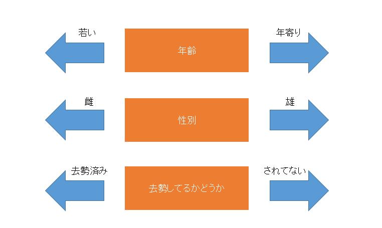 f:id:bump-rikuzyo:20180617183458p:plain