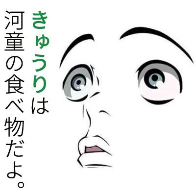 にーとのかがみ。運営者ケンヂのプロフィール画像