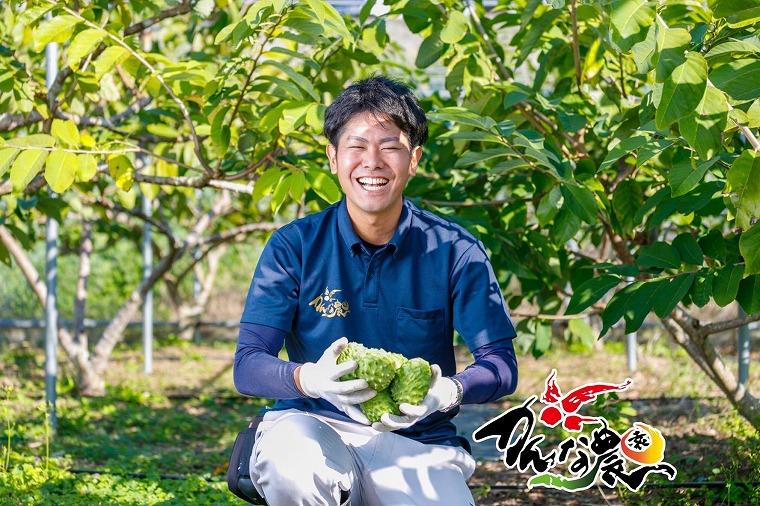 沖縄から全国へ!見た目と甘さがマッチしない高級フルーツ『アテモヤ』と売人を紹介したい