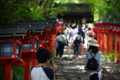 京都新聞写真コンテスト カップルで貴船