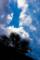 京都新聞写真コンテスト 木屋町で見上げる空