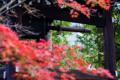 京都新聞写真コンテスト 鐘