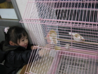 f:id:bunny114:20100304162226j:image