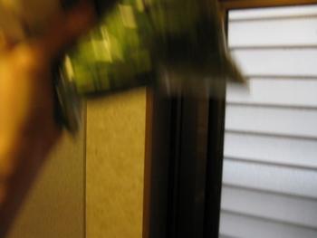 f:id:bunny114:20110305215021j:image