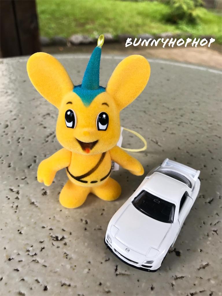 f:id:bunnyhophop:20190319021745j:image
