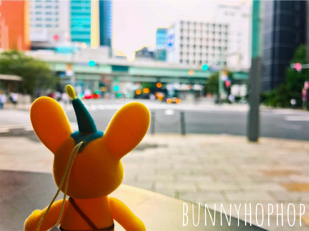 f:id:bunnyhophop:20190319021822j:image