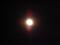 1月11日のキンと満月