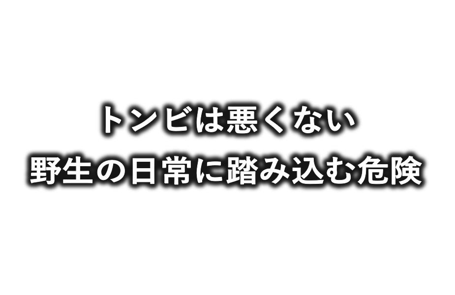 f:id:buramuraki:20190620113237p:plain