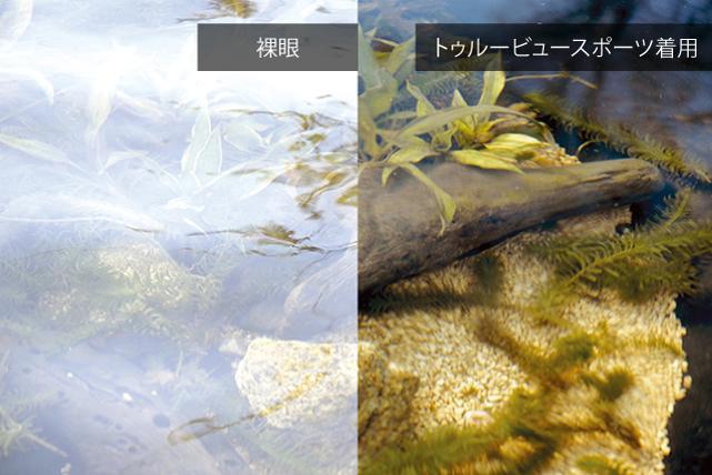 f:id:buramuraki:20190820131019j:plain