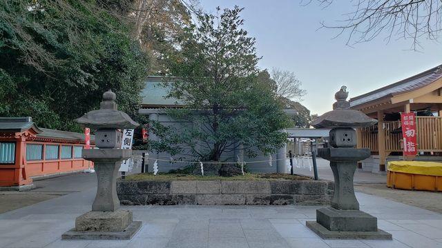 富岡八幡宮の境内