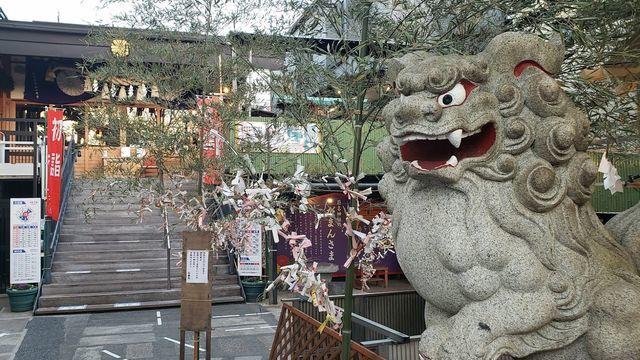 菊名神社の境内と狛犬
