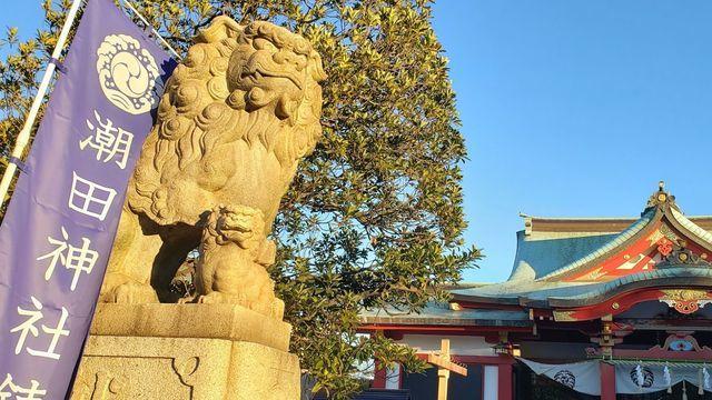潮田神社の狛犬