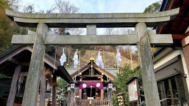 新羽総鎮守/杉山神社の鳥居と拝殿