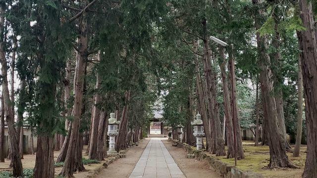 慶元寺の参道
