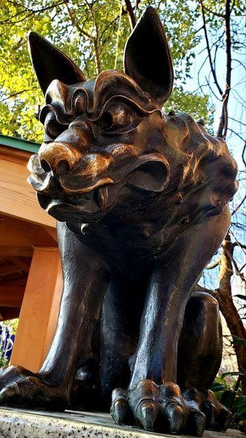 稲毛神社の天地睨みの狛犬