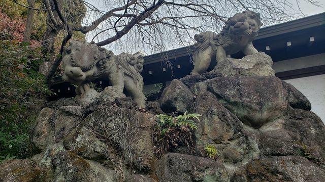 等々力玉川神社の石獅子
