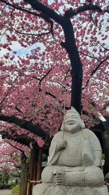 荏原神社のえびす様とカンヒザクラ