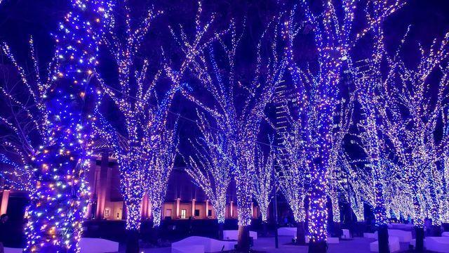 みなとみらい夜景/横浜美術館とマークイズ