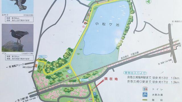 三浦海岸小松が池公園案内板