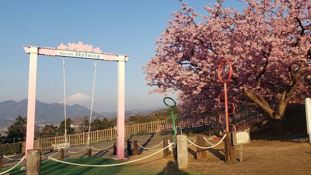 西平畑公園頂上のブランコ/SKY SWING