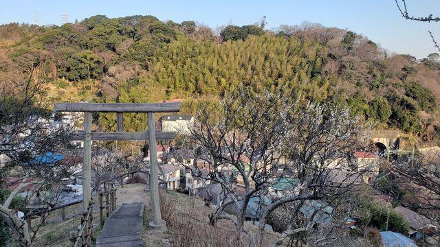田浦梅の里/大六天神社の鳥居
