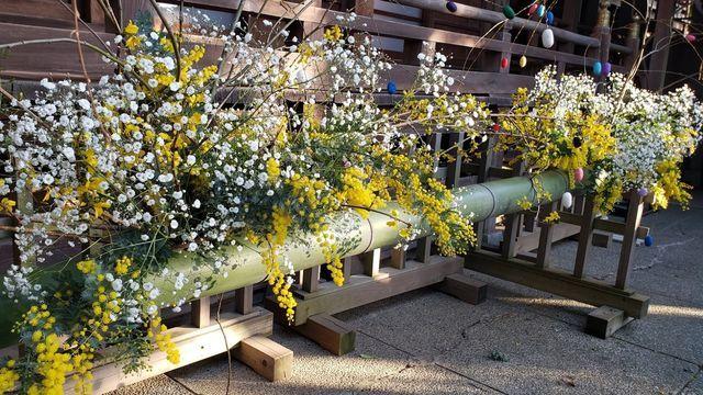 座間神社の生け花