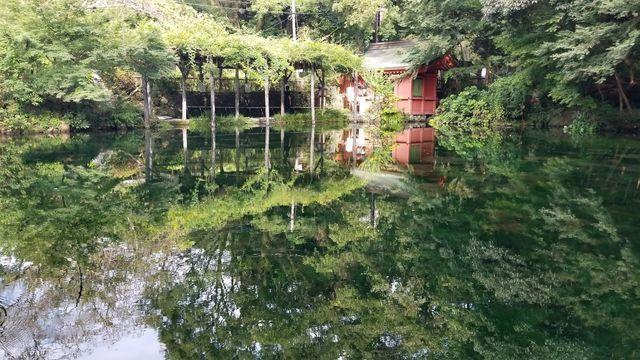 境内社/水屋神社と湧玉池