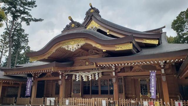 亀ヶ池八幡宮の社殿
