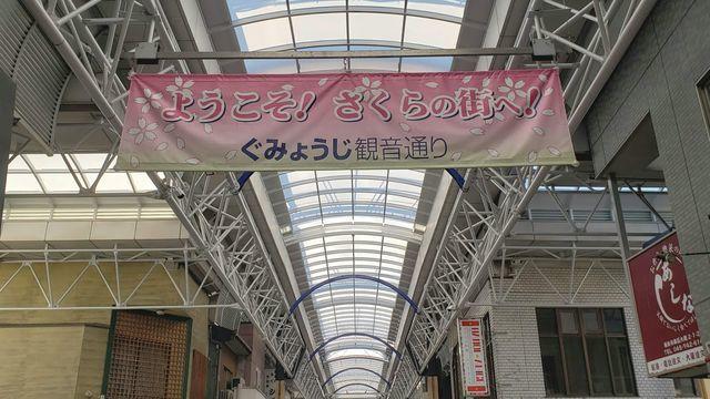 大岡川プロムナドの桜