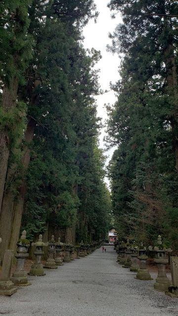 北口本宮浅間神社の参道