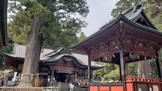 北口本宮浅間神社の本殿と神楽殿