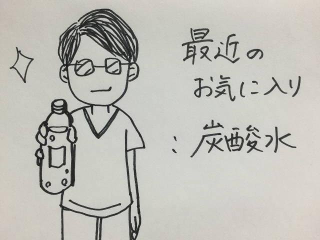 f:id:butakosan:20170520230337j:plain